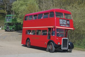 Two RT family buses descend the steep hill at Brooklands' southern entrance