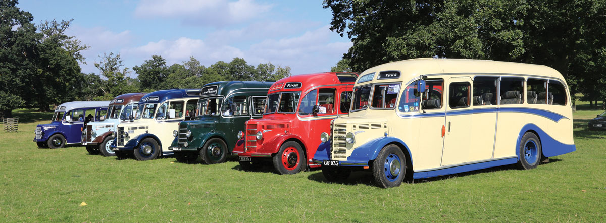 Countryside idyll, 1950s style. Bedford OBs line up near one of Woburn Abbey's lakes.
