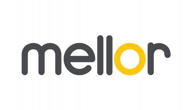 Mellor's #saveyourlocalbus website