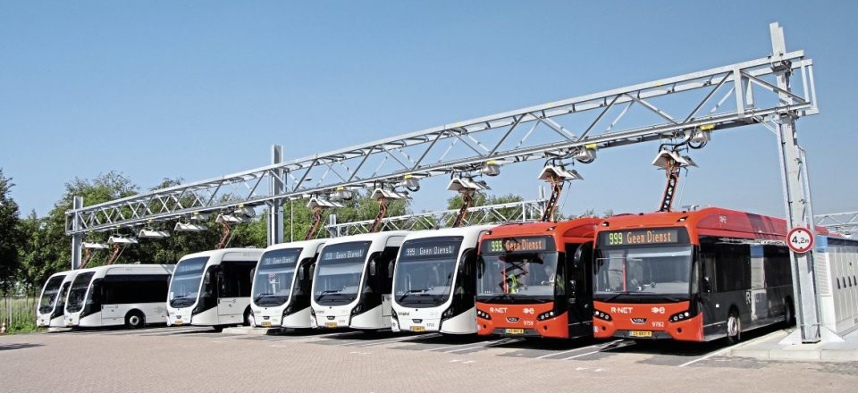 The different styling of the two bus types is illustrated in this shot. They have identical drivelines